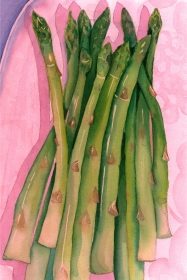 Asparagus, Elizabeth Cox