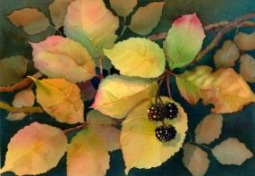 Blackberries, Elizabeth Cox
