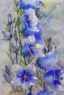 Canterbury Bells, Elizabeth Cox
