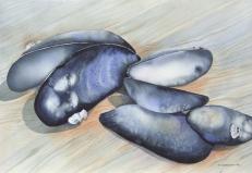 Mussels 2, Elizabeth Cox