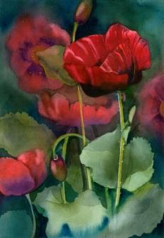 Red Poppies, Elizabeth Cox