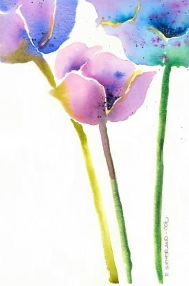 Anemones, Elizabeth Cox