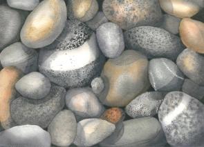Vancouver Island Stones, Elizabeth Cox