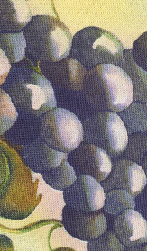 Detailed view, Grapes tea towel