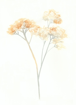 Original Beach Weeds, 15x22 Watercolour on Paper