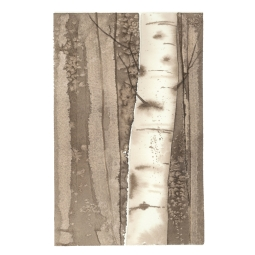Sepia Birches 1, 15x22.5 Watercolour on Paper